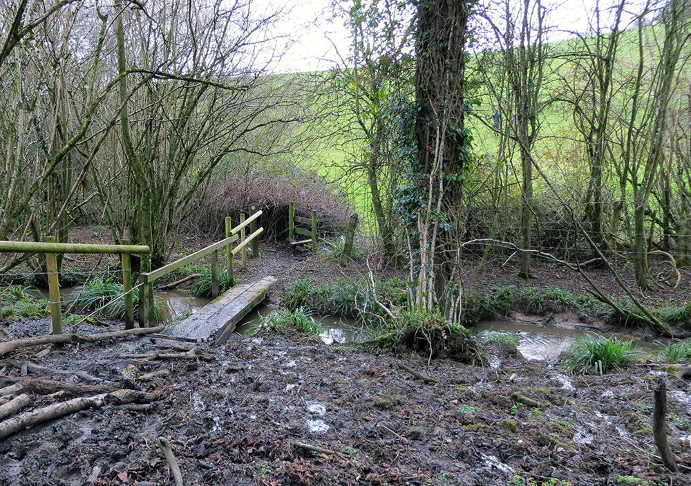 wooden-bridge
